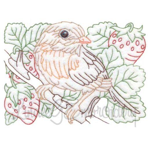 Bird & Strawberries Multicolor