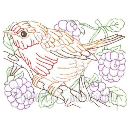 Bird with Raspberries Multicolor