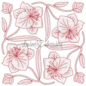 Gladiolus Redwork (August) (6.8-in)